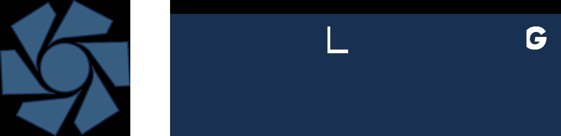 Logo Werder + Partner AG